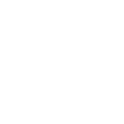 Destination Zoomer Logo