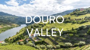 Douro Valley – Portugal